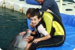 Omers Dolphin Therapy