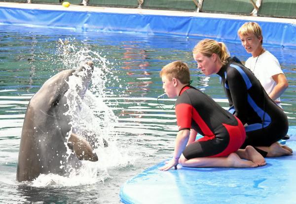 Tim lässt die Delfinpfeife erklingen (Quelle: Der Patriot)