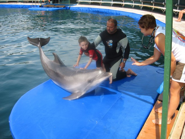 After dolphin therapy: Kirill tries to speak