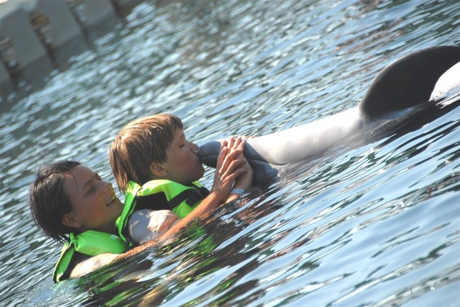 Dolphin Therapy in Marmaris actively supports animal protection