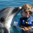 Delfintherapie von Kirill 2011
