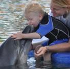 Dritte Delfintherapie von Leon in Marmaris