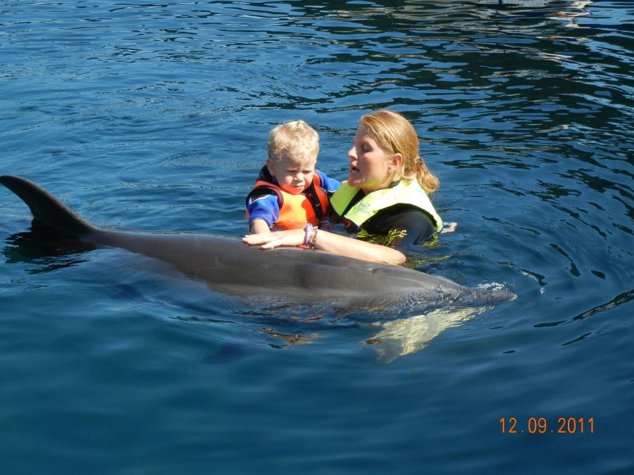 Third Dolphin Therapie for Leon