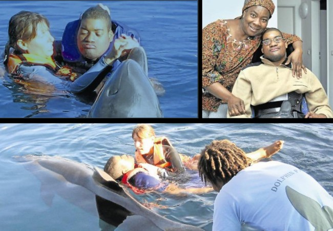 Dolphin therapy for Serge