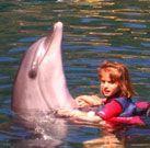 Delfintherapie – Erwartungen übertroffen
