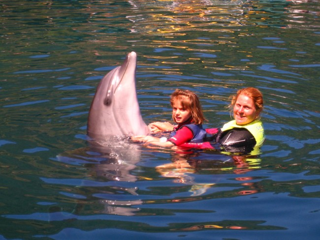 Dolphin therapy of Simona