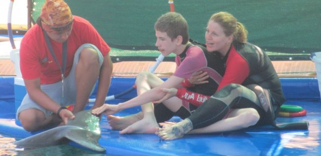 Dolphin Therapy for Dardan