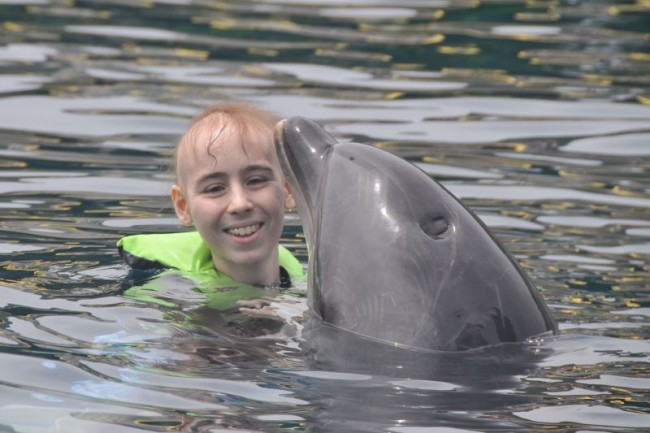 Make A Wish: Dolphin Therapy in Marmaris