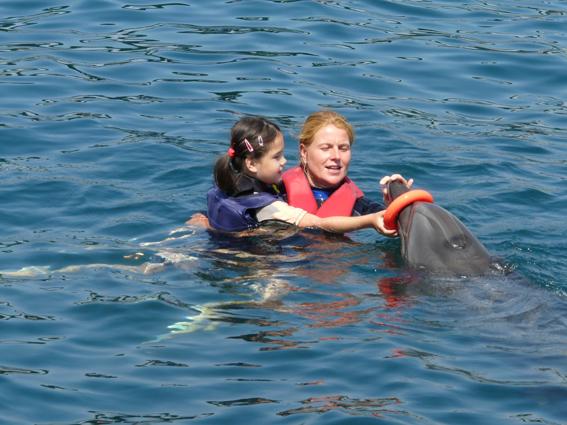 Jilian beim Schwimmen mit den Delfinen