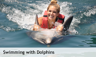 Swimming_with_Dolphins