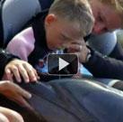 6 Yaşındaki Nico Hermann'ın Yunus Terapisi