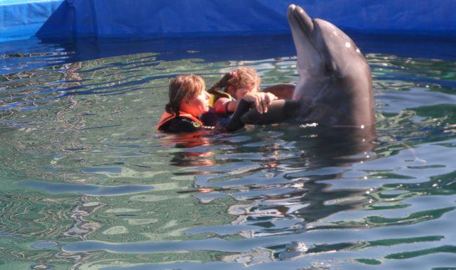 Nele's Dolfijntherapie