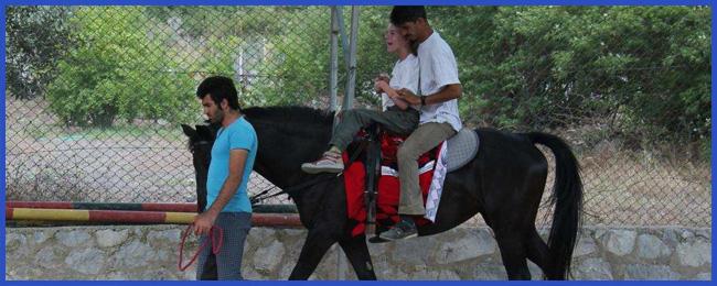 delfintherapie-bericht-vroni-14