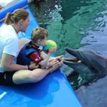 Luke schwimmt mit den Delfinen in der Türkei