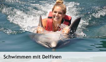 Schwimmen_mit_Delfinen