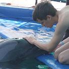 Sechste Delfintherapie in Folge für Stefan