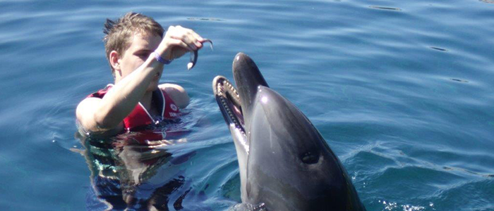 Sixth Dolphin Therapy for Stefan