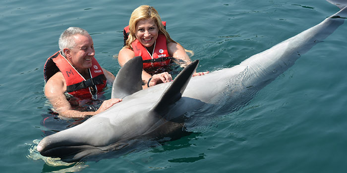 Dolphin Therapy in Marmaris of Sibel