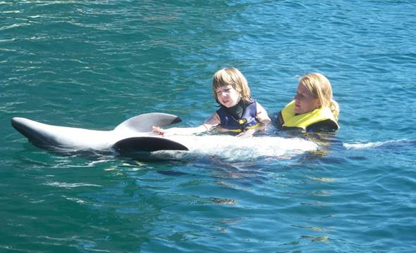 Dolphintherapie in Marmaris