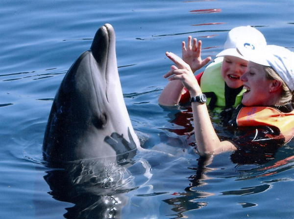 Dolphin Therapy of Janik | Geislinger Newspaper Report (Source www.swp.de)
