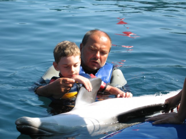 Dolphin therapy in Marmaris: Kirill has progressed a lot