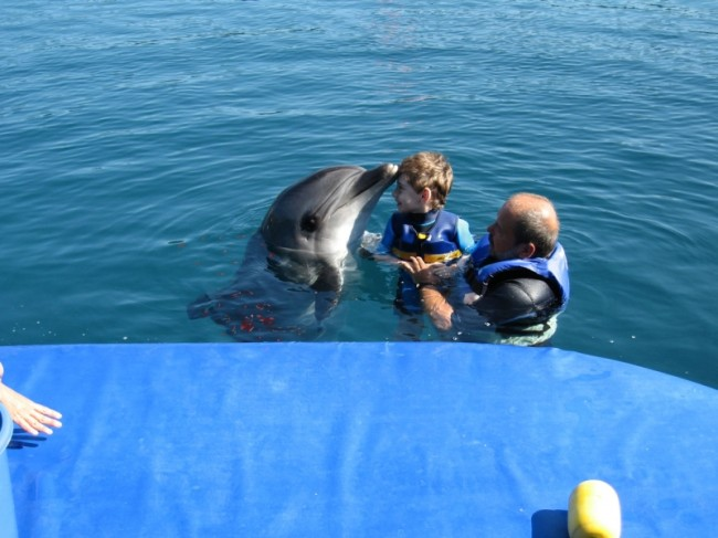 Dolphin Therapy in Marmaris of Kirill