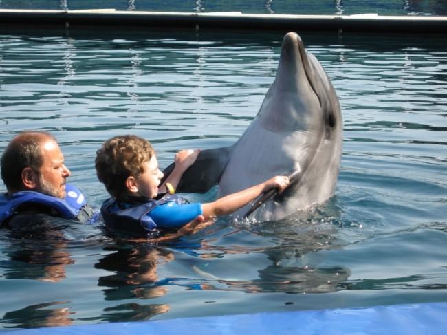Kirill tanzt mit den Delfinen