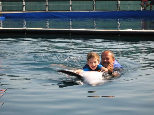 Schwimmen mit den Delfinen für Kirill