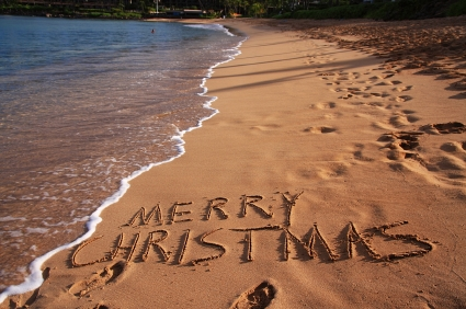 Merry Christmas and Happy New Year from Dolphin Therapy Center in Marmaris