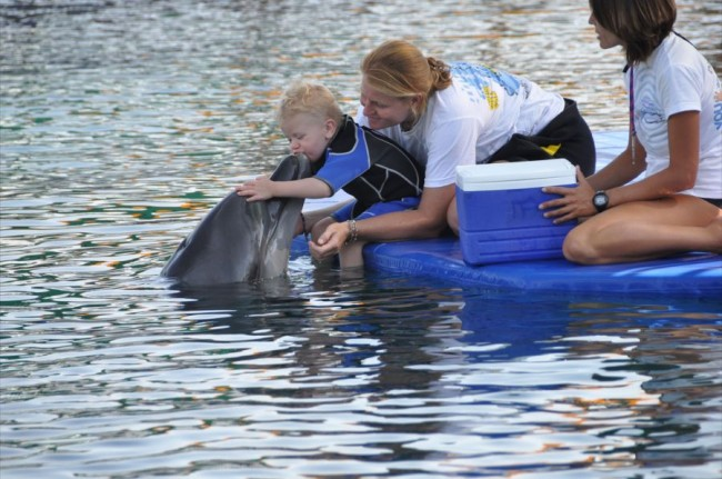 Third Dolphin Therapy for Leon