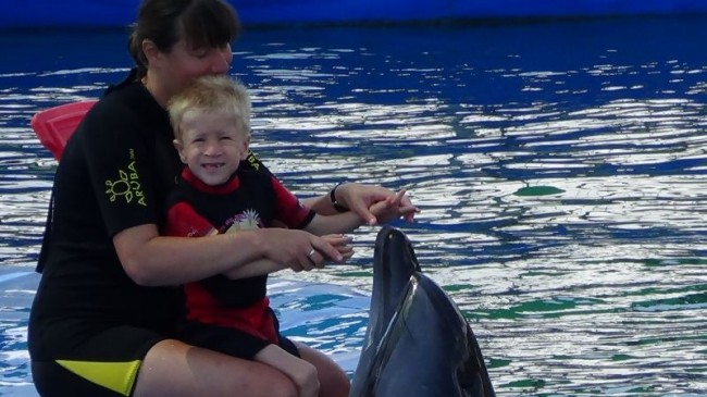 Dolphin therapy of Niklas