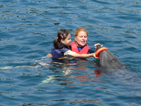 Dolphin Therapy di Jillian