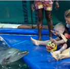 Timos Erfolgreicher Delfintherapie
