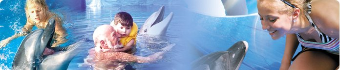 full width banner Dolphin Therapy with Axel ans happy child