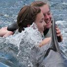 Vroni's Delfintherapie Tagebuch
