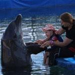 Großer Erfolg für den jungen Liam bei seiner Delphin-Therapie