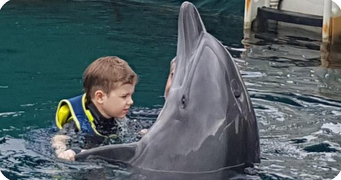 Delfintherapie von Lutz: Tanzt mit Delfin